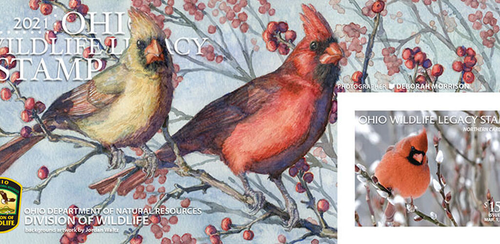 Wildlife legacy stamp 2021