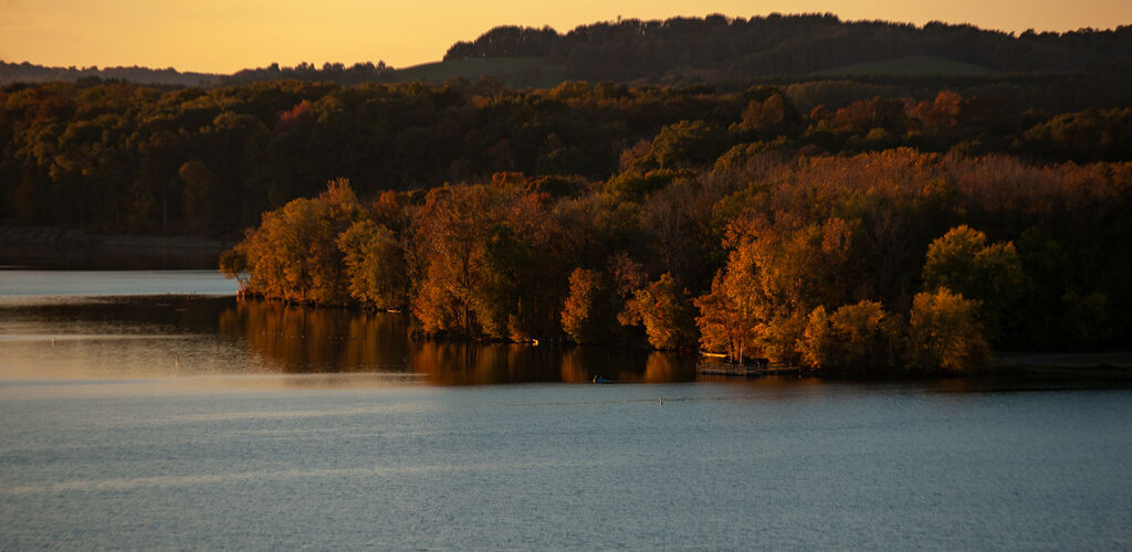Lake with trees surrounding during fall